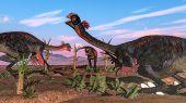 foto of dinosaur-eggs  - Tyrannosaurus rex attacking gigantoraptor dinosaurs and eggs  by day  - JPG