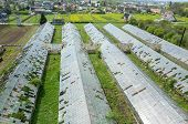 stock photo of hail  - Abandoned greenhouses damaged and destroyed by the hail - JPG