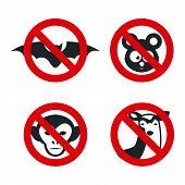 image of denied  - animal denied graphic design  - JPG