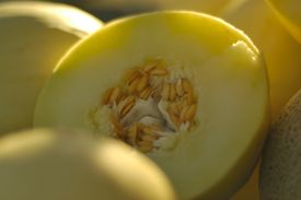 image of honeydew melon  - a freshly sliced honeydew melon on display at a local farmer - JPG