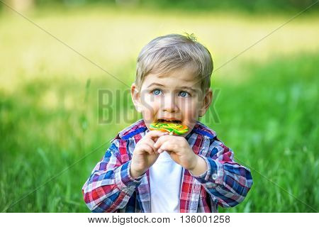 Cheerful kid eating candy in the park in the summer. Little boy in the summer park licking a lollipop.