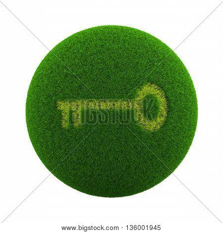 Grass Sphere Access Icon