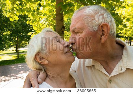 The happy old couple in the summer on a walk in park. The playful kiss of the elderly