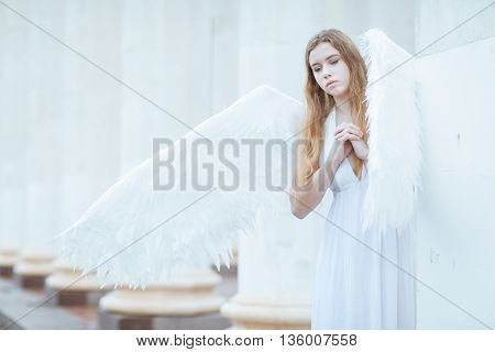 Girl with white angel wings folded her hands in prayer