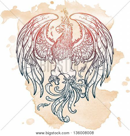 Phoenix or Phenix magic creature from ancient greek myths. Heraldic supporter. Sketch on grunge background. EPS10 vector illustration.