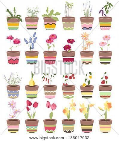 Spring flowers and summer vegetables in pots. Objects for your design, advertisement, posters.