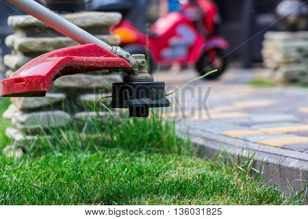 manual lawn mower on the background of green grass cut grass in not accessible places
