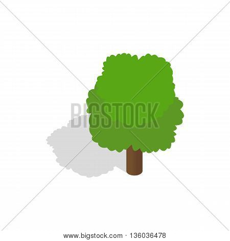 Fluffy tree icon in isometric 3d style isolated on white background. Nature symbol