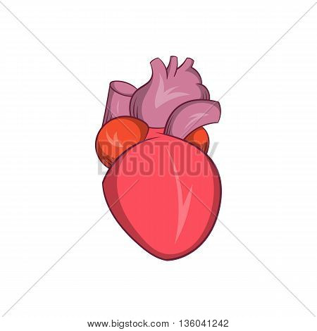 Heart human icon in cartoon style isolated on white background. Human organs symbol