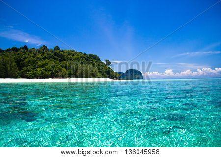 Sunny Panorama Wallpaper View