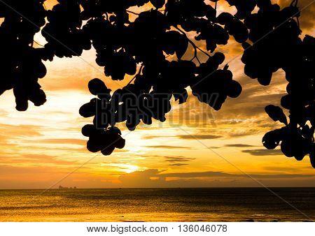 Evening and Sea Sunset Getaway