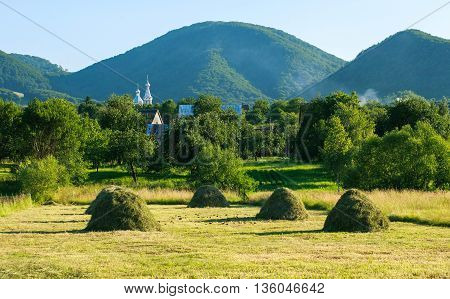 Farmstead near a forest in the mountains on background blue sky