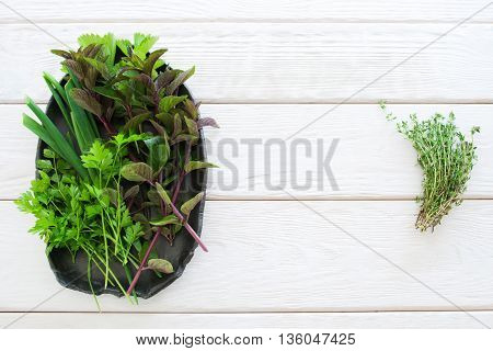 Fresh herbs on plate and thyme flat lay copyspace. Basil, parsley and chives on black plate at one side and bunch of thyme at other side of picture. Flavoring on white wooden background. void