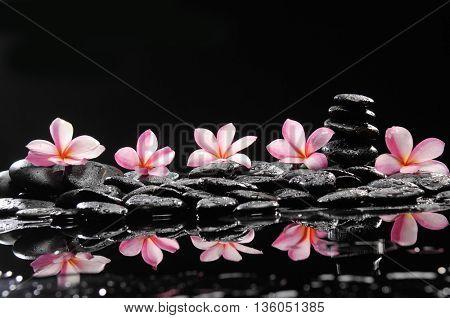 spa concept- frangipani and wet stones