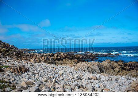 Scenic rocky coastline along the historic 17 Mile Drive in Pebble Beach California.