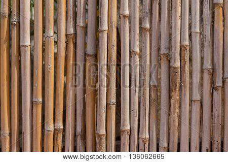bamboo panal surface background with space for text or image.