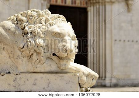 Image of a lion statue in Umbria Italy