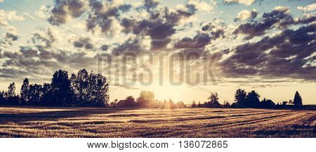 Countryside panorama at sunset. Golden wheat field, dramatic cloudy sky.