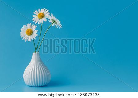 Beautiful Bouquet Of Daisies In Vase On Light Background