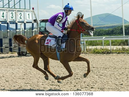 Horse race for the prize Ogranichitelni in Pyatigorsk,Caucasus,Russia.