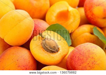 Background of fresh ripe apricots. With leaf.