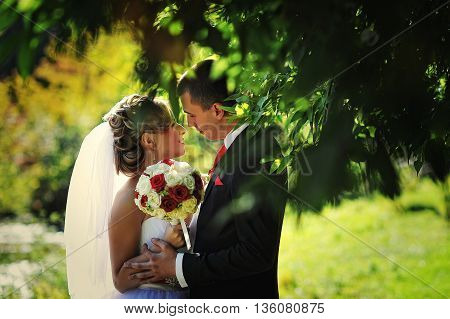 Young And Gorgeus Wedding Couple On Autumn Forest