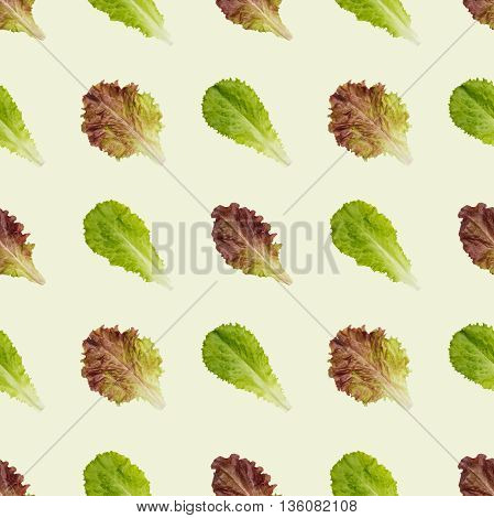 Seamless lettuce leaves pattern background. Combine to create endless size image