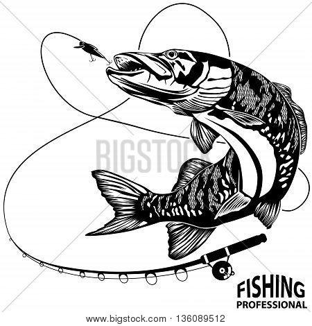 Pike Fishing Professional