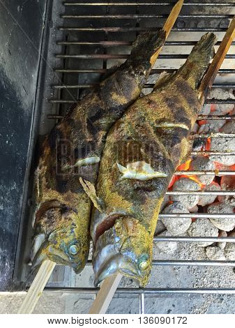 Herbs marinaded fresh Trout fish on stick grilling on BBQ red charcoal grill, high angle view