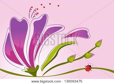 background flower buds ladybug lilacs on pink