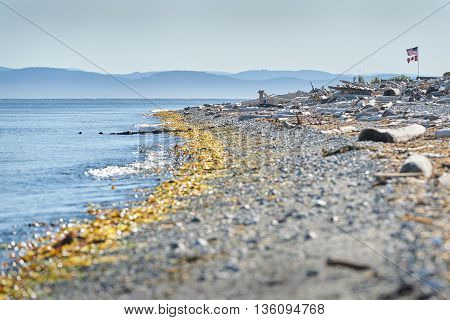 Point Roberts, Washington State Beach. The beach in Point Roberts, Washington State, looking out across Georgia Strait. USA.