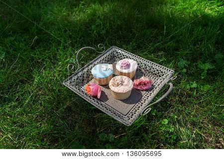 Tray of cupcakes sun standing on the lawn