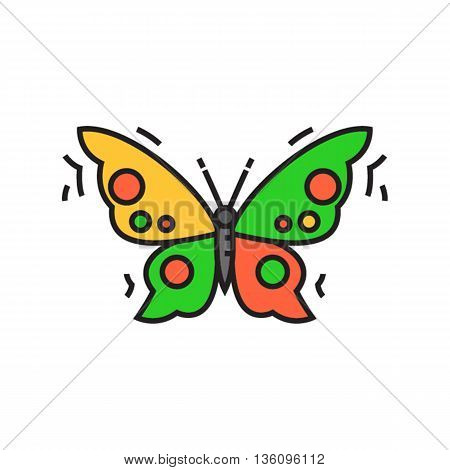 Butterfly. Insect, flying, kell. Animal concept. Can be used for topics like animal, biology, beauty