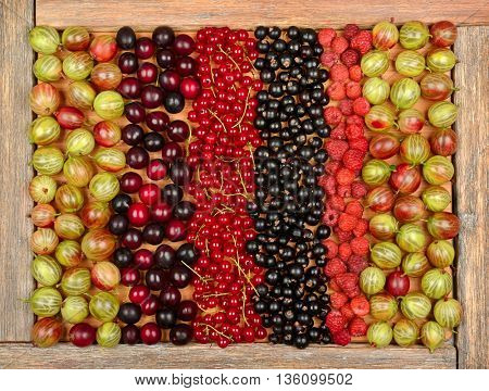 Collection of a variety of fruits (currants, gooseberries, raspberries, plums) on wooden background. The top view.