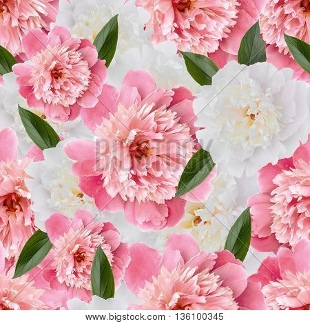 Seamless Floral Pattern With Pink Peonies