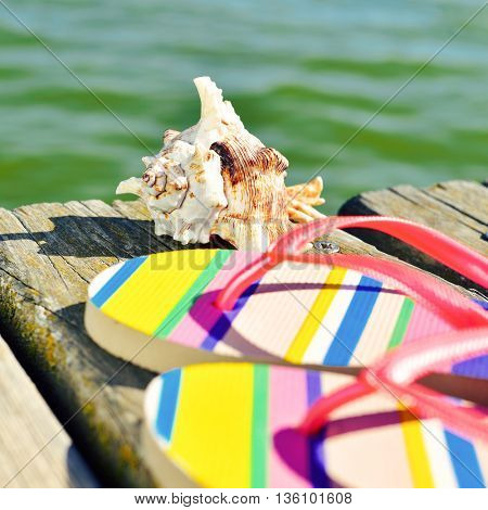 closeup of a pair of colorful flip-flops and a conch on a weathered wooden pier over the sea