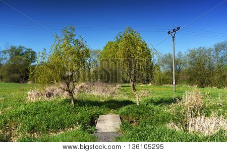 Spring near Kout village in mountains Sumava