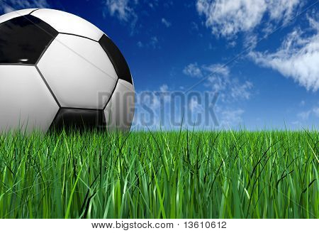 soccer ball on the grass - football in a 3d render