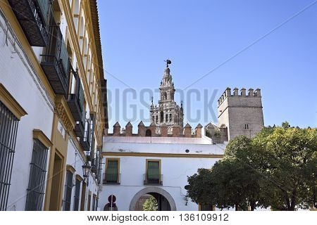 View of The Giralda the bell tower of the Seville Cathedral in Seville Spain
