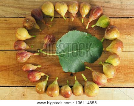 Beautiful organic figs, lay flat in circle
