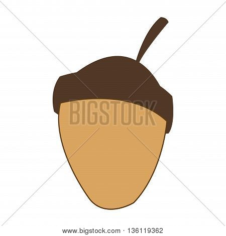 simple flat design acorn cartoon icon vector illustration