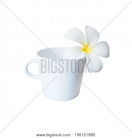 White plumeria flower and empty cup of coffee isolated on white background