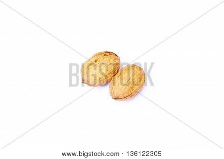 Two nuts brown rough isolated white background