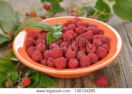 Fresh raspberries in a bowl on a wooden background