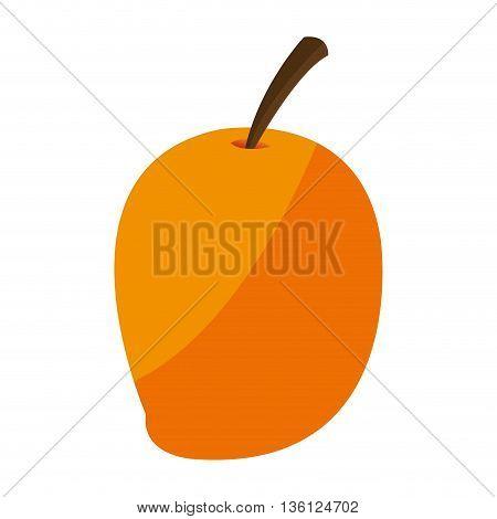 simple flat design ripe mango icon vector illustration