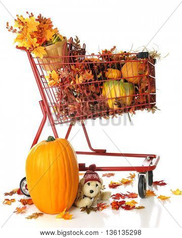 A red shopping basket filled with pumpkins,gourds and fall foliage.  A larger pumpkin, fallen leaves and plush puppy sits at its base.  On a white background.