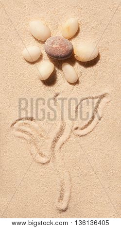 Flower Of Sea Stones Drawn On Sand. Summer Beach Background