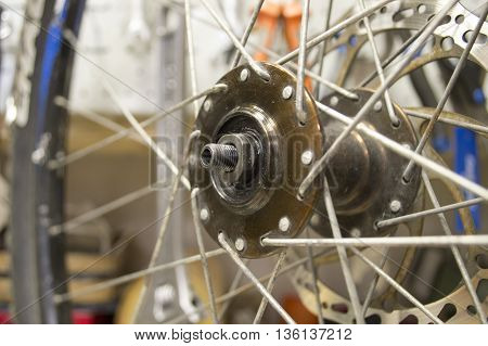 the spokes of a bicycle wheel and hub close-up