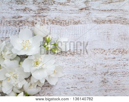 White sweet mock-orange flowers bouquet in the corner of the rustic background