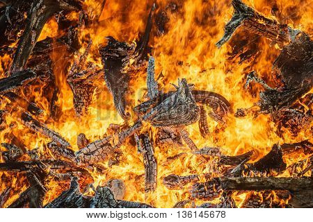 Great bonfire closeup bright orange fire flames and firewood background
